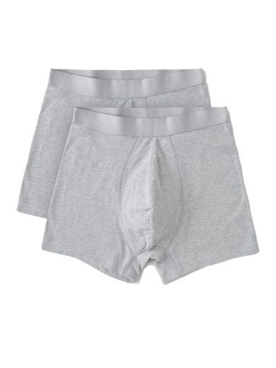 Organic Basics Organic Cotton Boxers Briefs 2-pack Grey