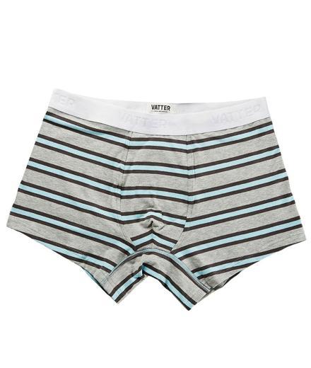 VATTER Trunk Short Tight Tim Grey/Black/Blue Stripes