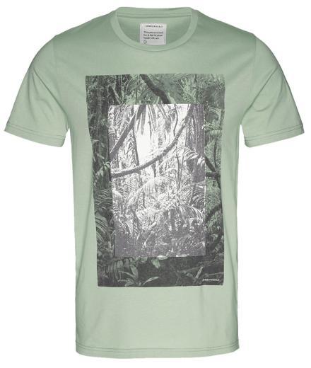 ARMEDANGELS James Rainforest pale green | L