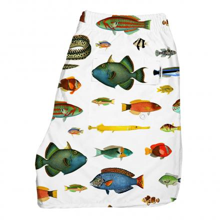 DEDICATED Swim Shorts Tropical Fish