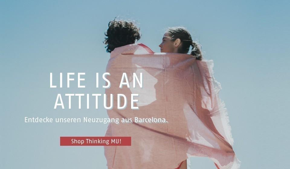 life is an attitude